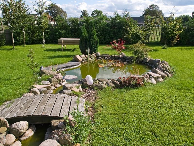 Vy ještě nemáte na své zahradě tvarovanou kryptomerii?