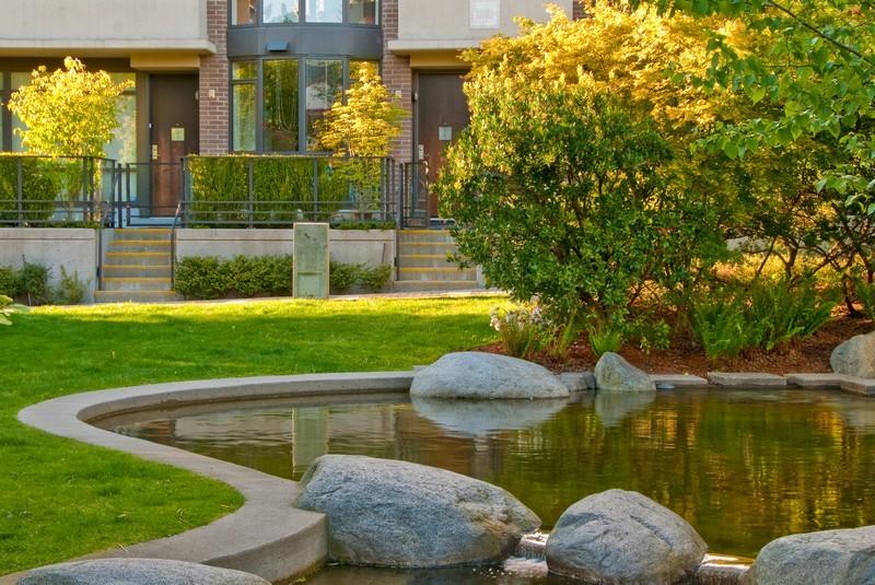 Okrasné trávy pro vaši zahradu