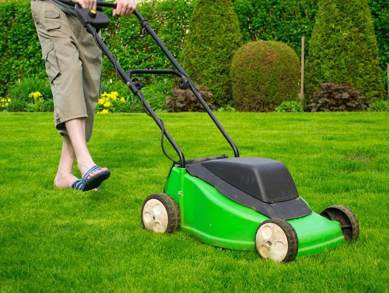 Jarní péči o trávník začněte vertikutací
